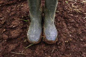 Dirty farmer's rubber boots on muddy country road