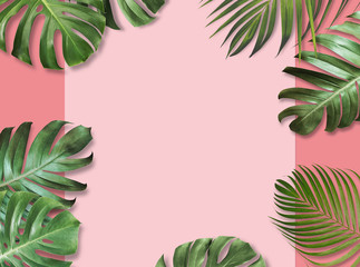 Wall Mural - Tropical leaves on pink paper background with copy space Summer banner design