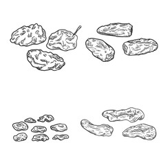 Vector Set of Sketch Dried Fruits.