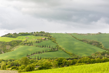 Rural view of the fields with a winding road on a hill from the valley