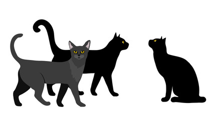 Black cats. Walking cats and sitting cat black on a white isolated background.