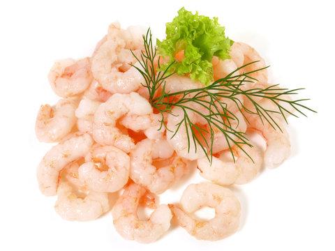 Eismeer Shrimps