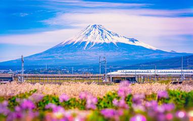 Shinkansen bullet train passing by Mount Fuji, Yoshiwara, Shizuoka prefecture, Japan. Wall mural