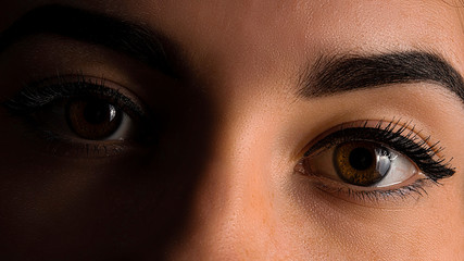 Close up image of female brown eyes art