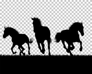 Horse silhouette on Grass Background