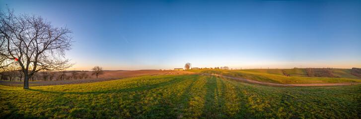 Panorama of spring plowed field