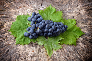 Blue muscat grapes bunch isolated on wooden background. Grapes with green leaves.