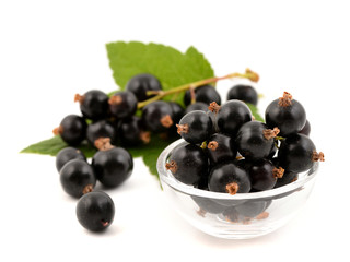 Black currant with leaves on white background. Fresh berries of currant.