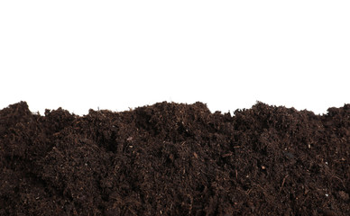 Layer of fresh soil isolated on white. Gardening time Wall mural