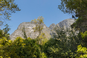 Mountains in the Tablemountain National Park, Cape Town, South Africa. Panorama of forest, blue sky and mountains.