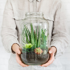 Woman holding glass jar with succulent plants