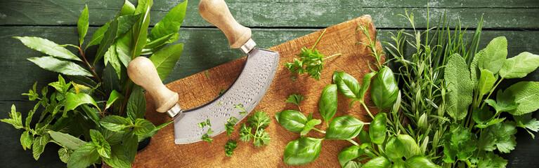 Mezzaluna knife on a chopping board with herbs Wall mural