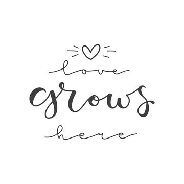 Lettering with phrase Love grows here. Vector illustration.