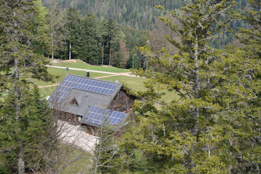House with solar panels mounted on the roof, which stands next to the coniferous forest. View from above