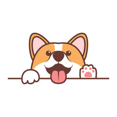 Funny corgi dog paws up over white wall, vector illustration