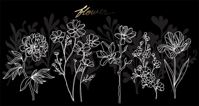 Art flower hand drawing and sketch black and white with line art illustration isolated on black background.