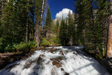 A flowing whitewater river in Montana.
