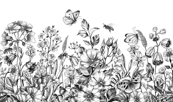 Wild Plants and Insects Seamless Border