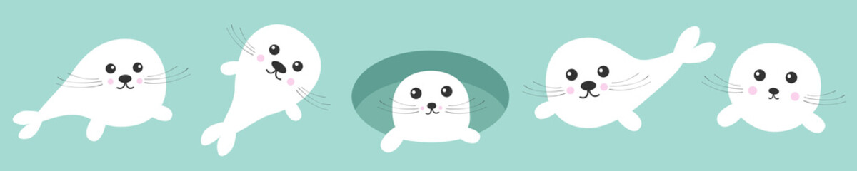 Harp baby seal pup set line. Ice-hole Cute cartoon kawaii funny character. Blue background. Isolated. Flat design.