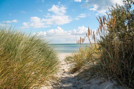 Kleiner Weg über Düne zum Strand