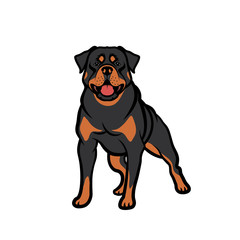 Rottweiler dog - isolated vector illustration - Vector