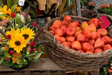 Herbst, Wochenmarkt, Marktstand, Lampionblumen