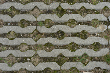 stone pavement pattern with grass, moss and rocks inbetween