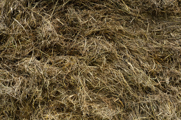 messy hay stack texture topview