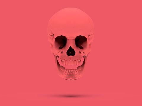 Pink flying skull on a Pink Background. High Resolution 3D Render.