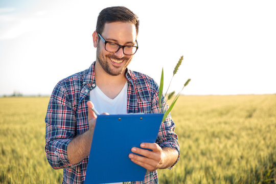 Smiling young agronomist or farmer inspecting wheat field before the harvest. Examining plant stems and writing data to a clipboard. Organic farming and healthy food production