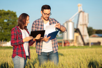 Two young female and male agronomists or farmers inspecting wheat fields before the harvest. Man is filling reports on a clipboard. Organic farming and healthy food production.