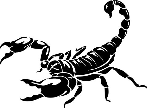 Scorpion, Isolated Silhouette