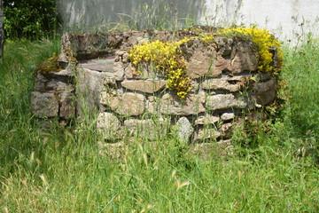 Vieux puits Wall mural