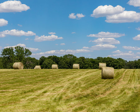 Round hay bales on a hillside field on a sunny day with a blue sky and clouds