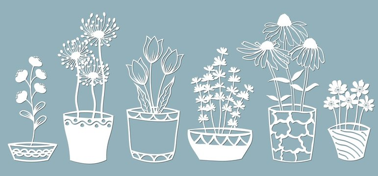 Echinacea, chamomile, schefler, noble hepatica, zephyrantes, stokesia. Vector illustration. Set of paper flower in pots, stickers. Laser cut. Set template for laser cutting and Plotter. Vector illustr