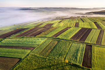 Agricultural landscape from air on sunny spring dawn. Green and brown fields, morning fog.