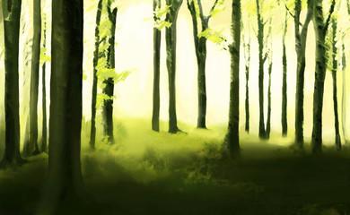 Obraz Forest illustration - fototapety do salonu