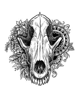Skull of a wolf with patterns and flowers