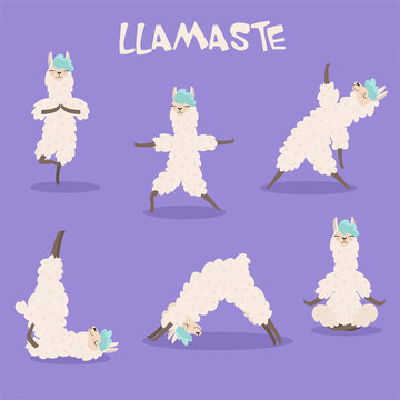 Set of stylish cartoon llamas in various poses of yoga. Vector illustrations isolated on purple background.