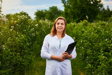 Woman scientist working in fruit garden. Biologist inspector examines blackberry bushes Wall mural