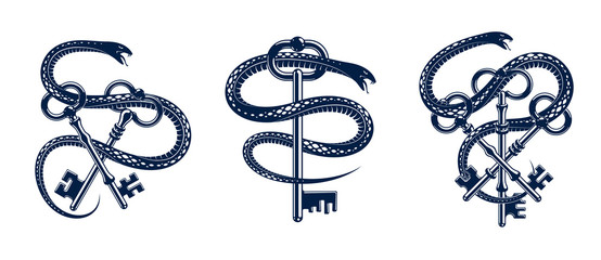 Snake wraps around vintage key, protected secret concept, turnkey and serpent old style tattoo, vector symbol logo or emblem.