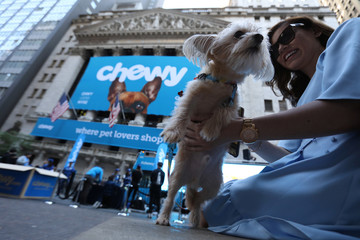 Stewie the Yorkie Chihuahua is seen outside the New York Stock Exchange (NYSE) ahead of the IPO for Chewy Inc. in New York City