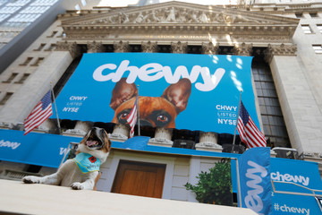 Bailey the rescue dog poses for a photo in a photo booth ahead of the Chewy Inc. IPO at the New York Stock Exchange (NYSE) in New York City