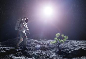 Astronaut exploring an alien planet. Green plant growing