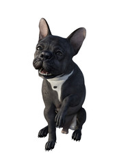 French bulldog. 3d render.