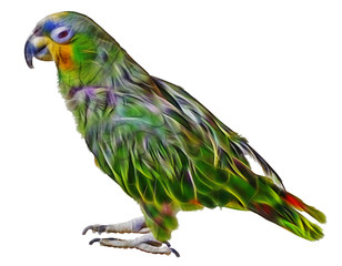 fractal picture of Parrot isolated on white