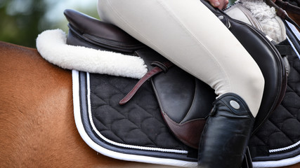 Rider on horse at a show jumping competition