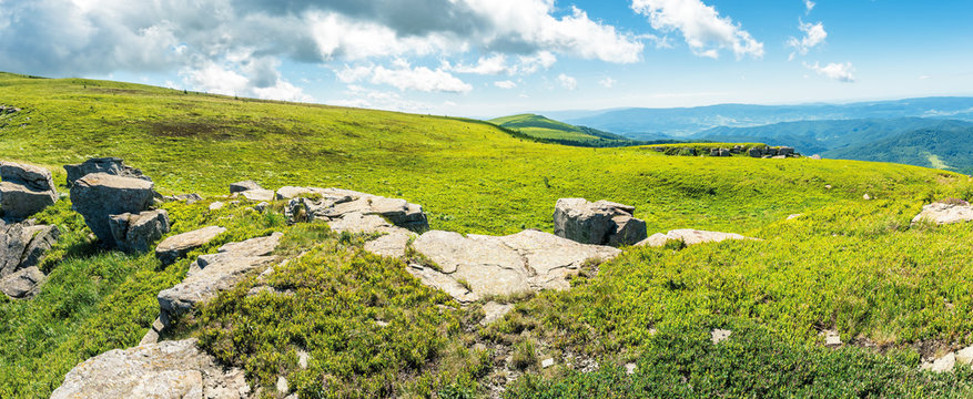 panorama of a mountain meadow with rocks. beautiful sunny day in summer. boulders among the tall grass. fine weather with clouds on the sky. awesome landscape of runa ridge transcarpathia, ukraine