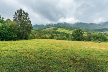 countryside in mountains on an overcast day.  grassy meadow or pasture in the outskirts of village. rainy weather
