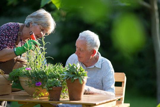 Senior couple potting plants